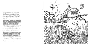 Helen Elliott Village Life Colouring Book, published by Graffeg, Penbryn