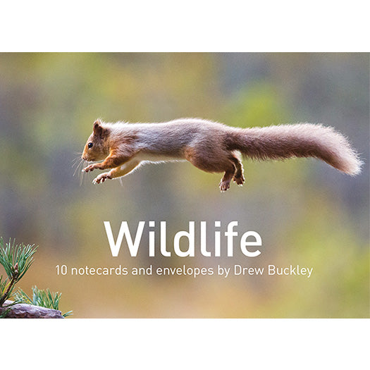 Wildlife Notecard Pack