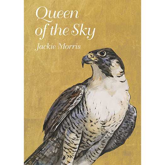 Queen of the Sky – Compact Edition