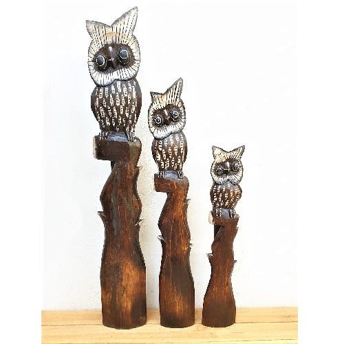 Owls atop a branch - Just-Oz