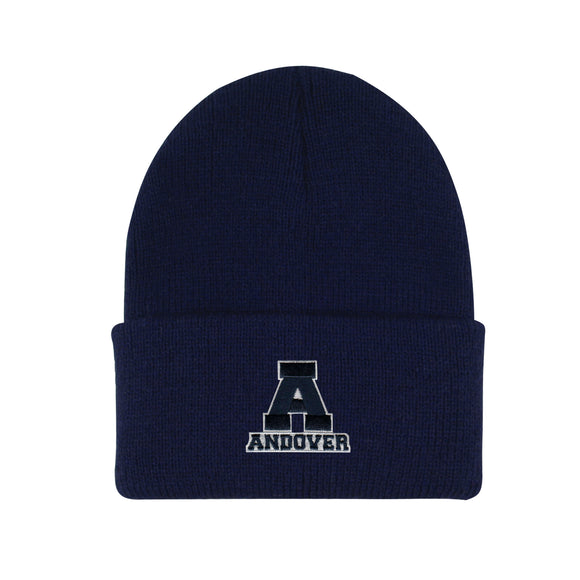 Navy Rib Knit Cuff Hat