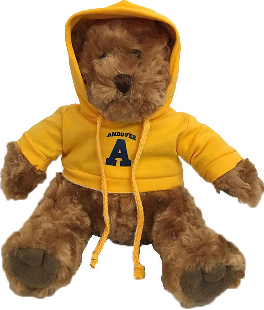 Teddy Bear with Hoody