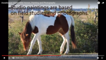 Load image into Gallery viewer, Plein Air Painting the Assateague Back Country - DAY 3