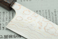 Takeshi Saji 180mm Santoku B2 Rainbow Damascus Custom #1