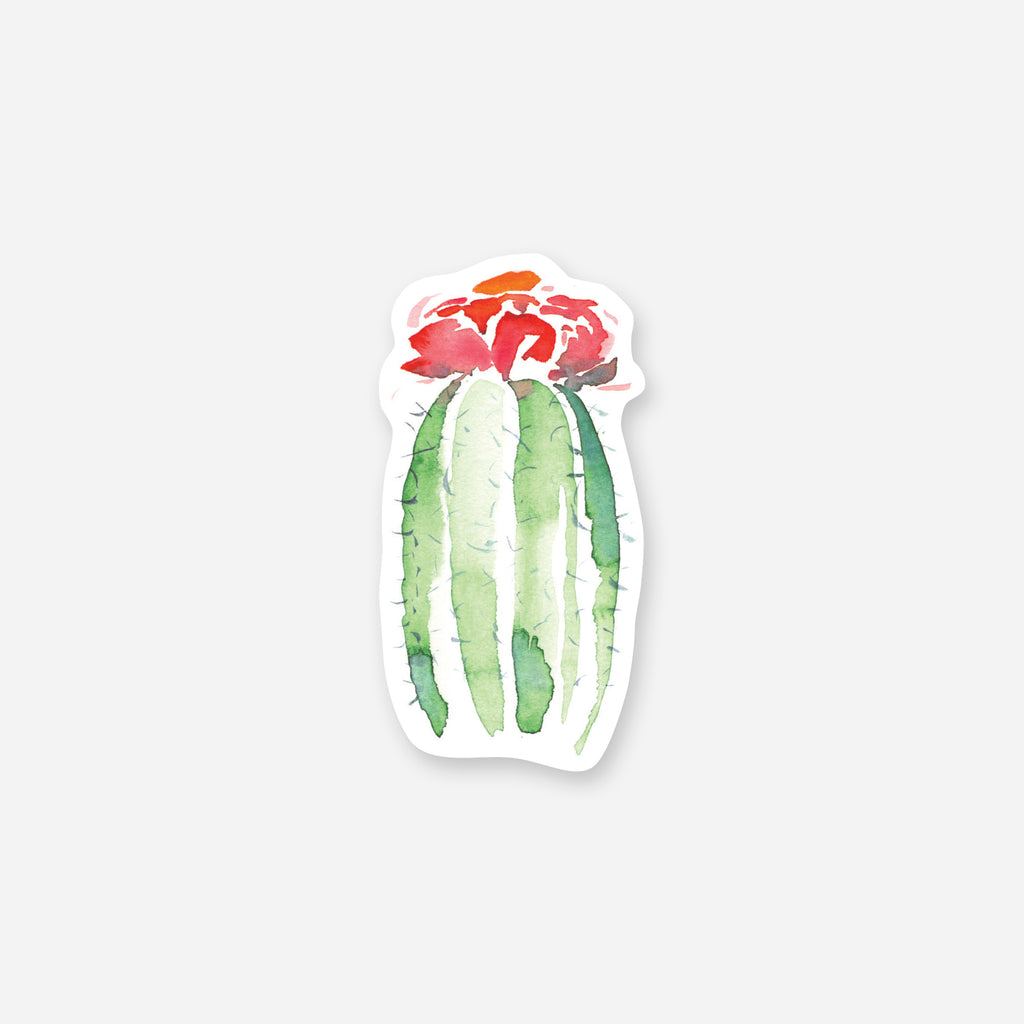 Barrel Cactus Vinyl Sticker