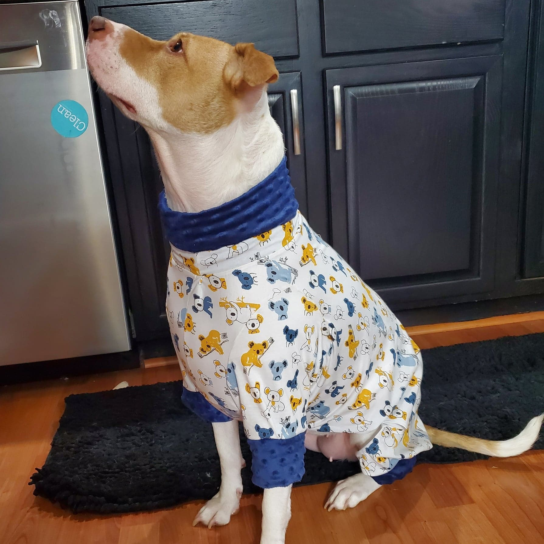 Koala Dog Pajamas (Large Dogs)