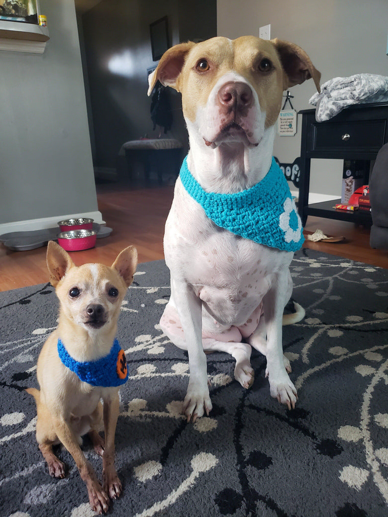 Embellished Crochet Bandanna - Go Local Pets