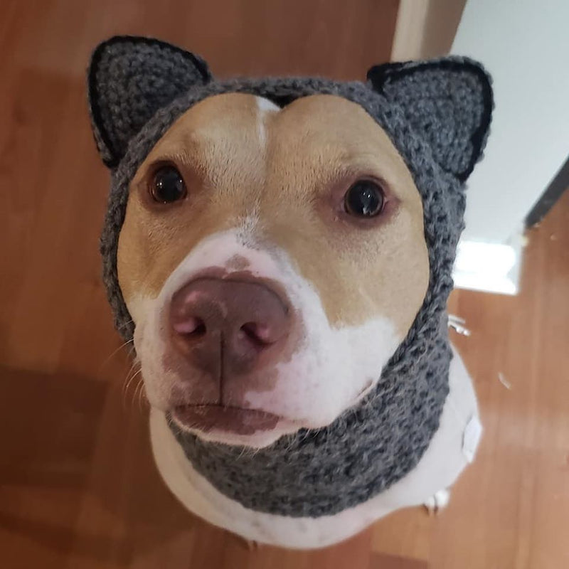 Snood - Go Local Pets