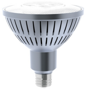 LED PAR38 25W- Auditorium Bulb
