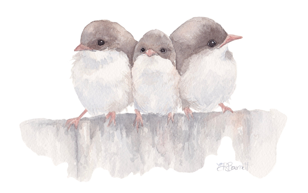 Three Little Wrens Print