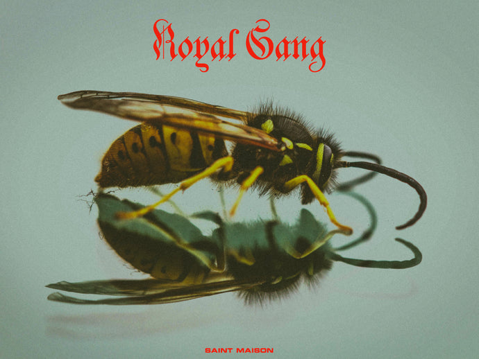 ROYAL GANG (PLAYLIST)