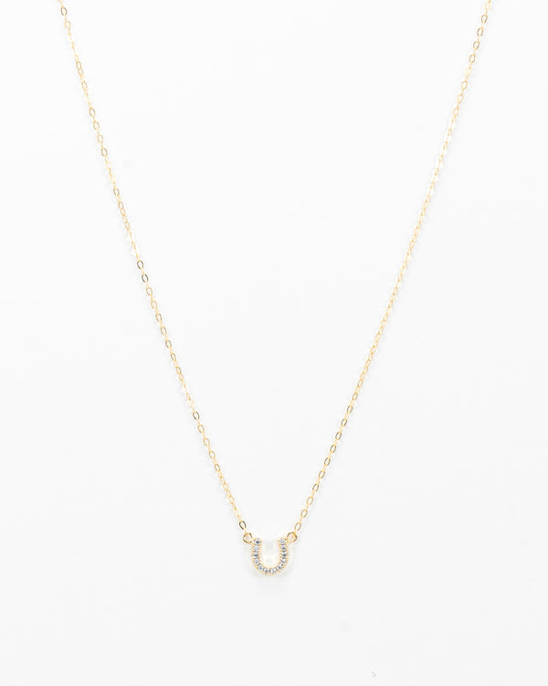 The Horseshoe Necklace