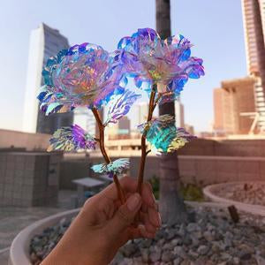 24K Galaxy Rose - shopaholicsonlyco