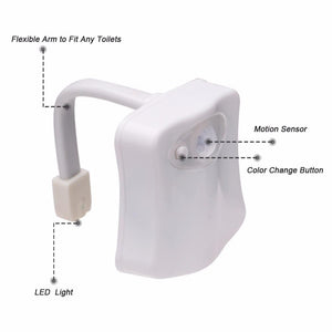 Motion Sensor Bathroom Night Light - shopaholicsonlyco