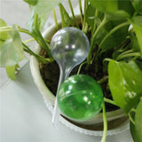 Automatic Self Watering Plant Bulb - shopaholicsonlyco