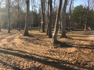 Trees left standing after land clearing in Cherokee County Alabama