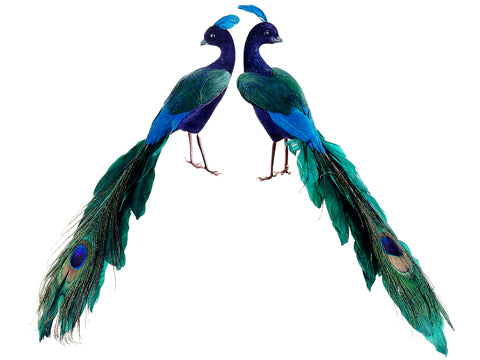 "11"" Glittered Peacock (2 ea./set) Peacock (pack of 6)"