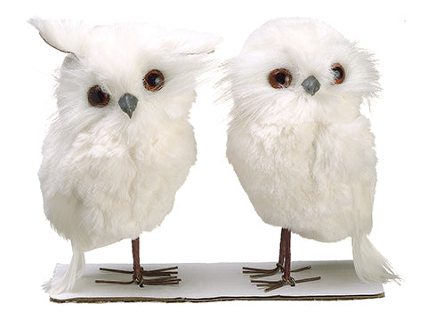 "4.9"" Snow Owl (2 ea/set)  White (pack of 6)"