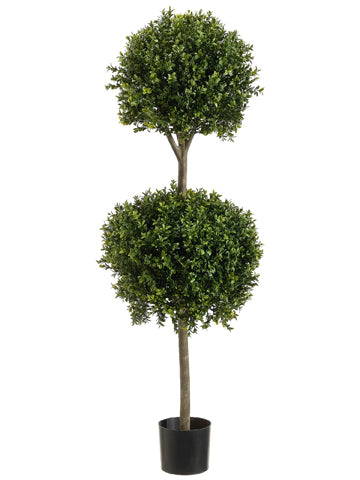 4' Double Ball-Shaped Boxwood Topiary in Plastic Pot Two Tone Green (pack of 1)