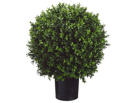"23.5""H Ball-Shaped Boxwood Topiary in Plastic Pot Green (pack of 2)"