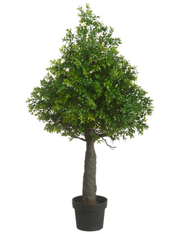 "35.4"" Boxwood Cone Topiary in Plastic Pot Green (pack of 2)"
