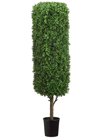 "60"" Rectangular Boxwood Topiary in Black Plastic Pot Green (pack of 1)"