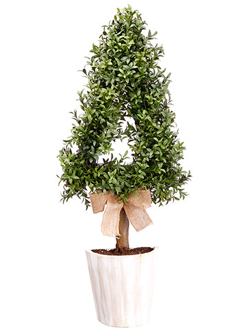 "30"" Cone-Shaped Boxwood Wall Topiary in Pot Green (pack of 2)"