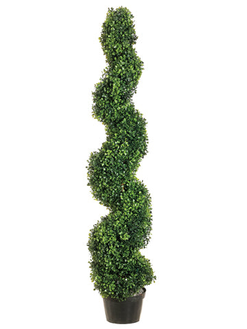 4' Pond Boxwood Spiral Topiary in Plastic Pot Green (pack of 1)