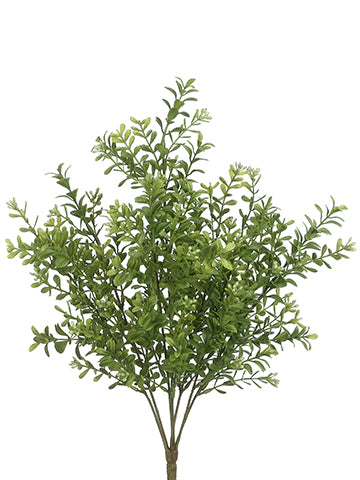 "17"" Boxwood Bush x7  Two Ton Green (pack of 12)"