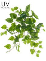 "19"" UV Protected Philodendron Bush Green (pack of 12)"