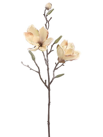 "26"" Frosted Magnolia Spray  Beige Ice (pack of 12)"