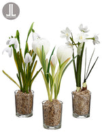 "9"" Snowdrop/Narcissus/Crocus in Glass Vase Assortment (3 ea/Set) White (pack of 4)"