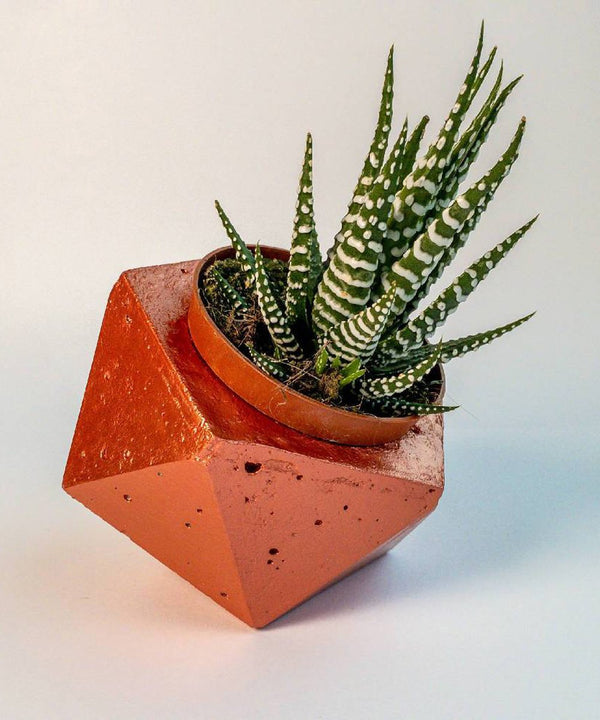 Geometric Planters - Rose Gold