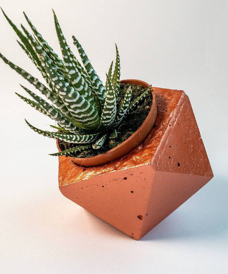 Geometric Planters - Set of 3