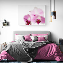 Load image into Gallery viewer, Pink Orchid