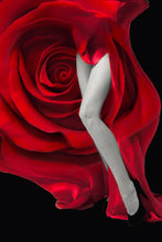 Load image into Gallery viewer, Red Rose