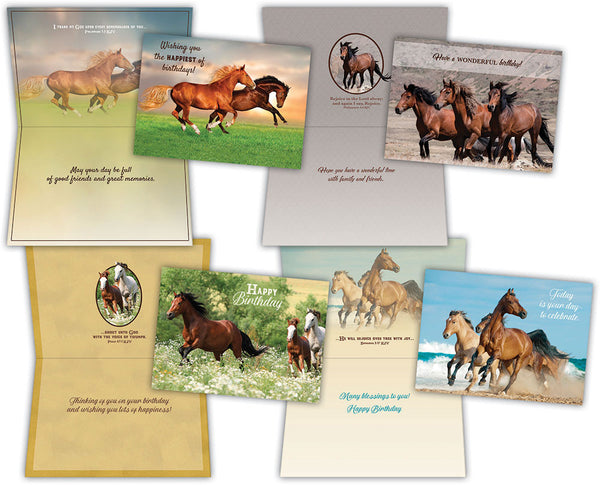 Birthday - Wild Horses - Assorted Birthday Cards, Box of 12