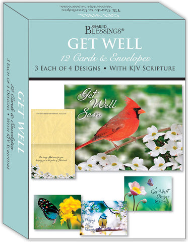 Get Well - Birds and Butterflies - Assorted Get Well Cards, Box of 12