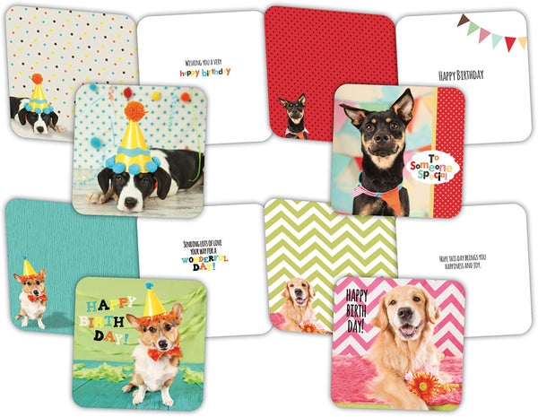 Party Pups - Boxed Birthday Cards, Box of 16