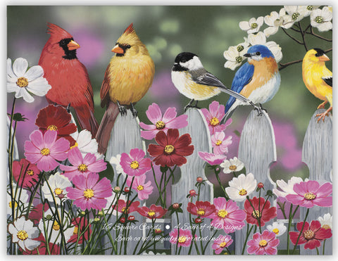 Songbirds - Assorted Note Cards, Box of 16