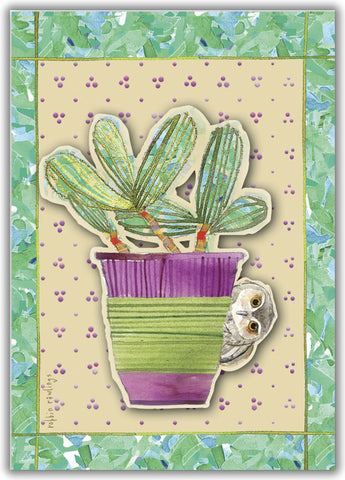 Succulent and Owl - Boxed Greeting Cards, Box of 15