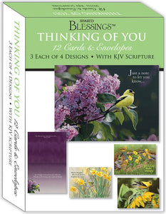 Thinking of You II - Assorted Thinking of You Cards, Box of 12