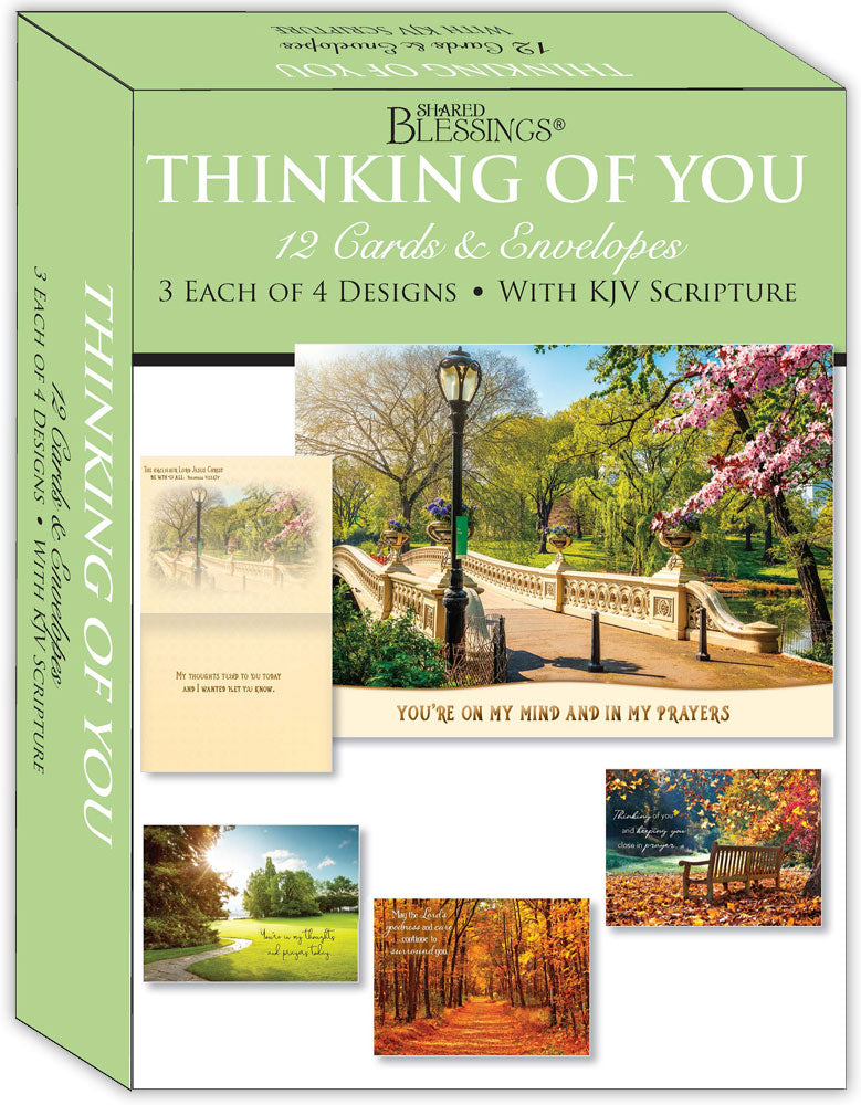 Thinking of You - Pathways - Assorted Thinking of You Cards, Box of 12