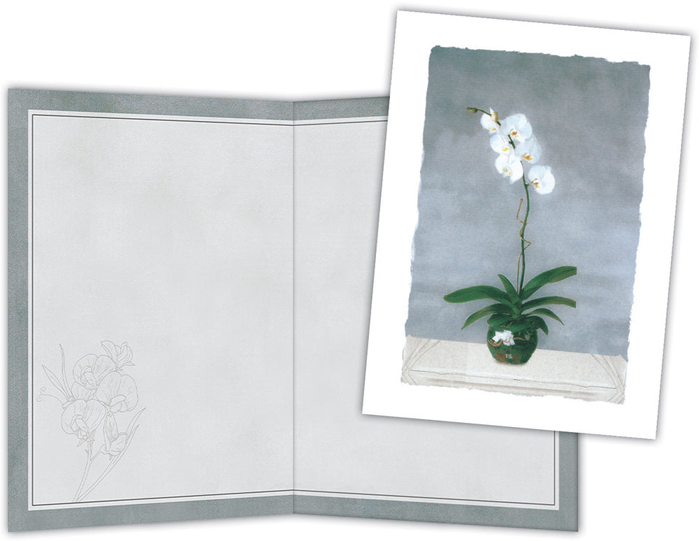 White Orchids - Boxed Note Cards, Box of 15