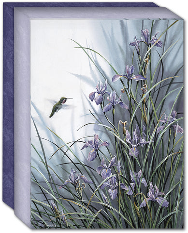 WILD GARDEN HUMMINGBIRD - Boxed Note Cards, Box of 15