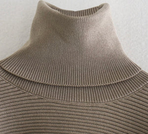 Tessa Extreme Crop Turtleneck Top