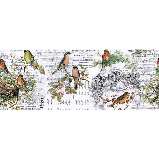 Tim Holtz Idea-Ology Aviary Collage Paper