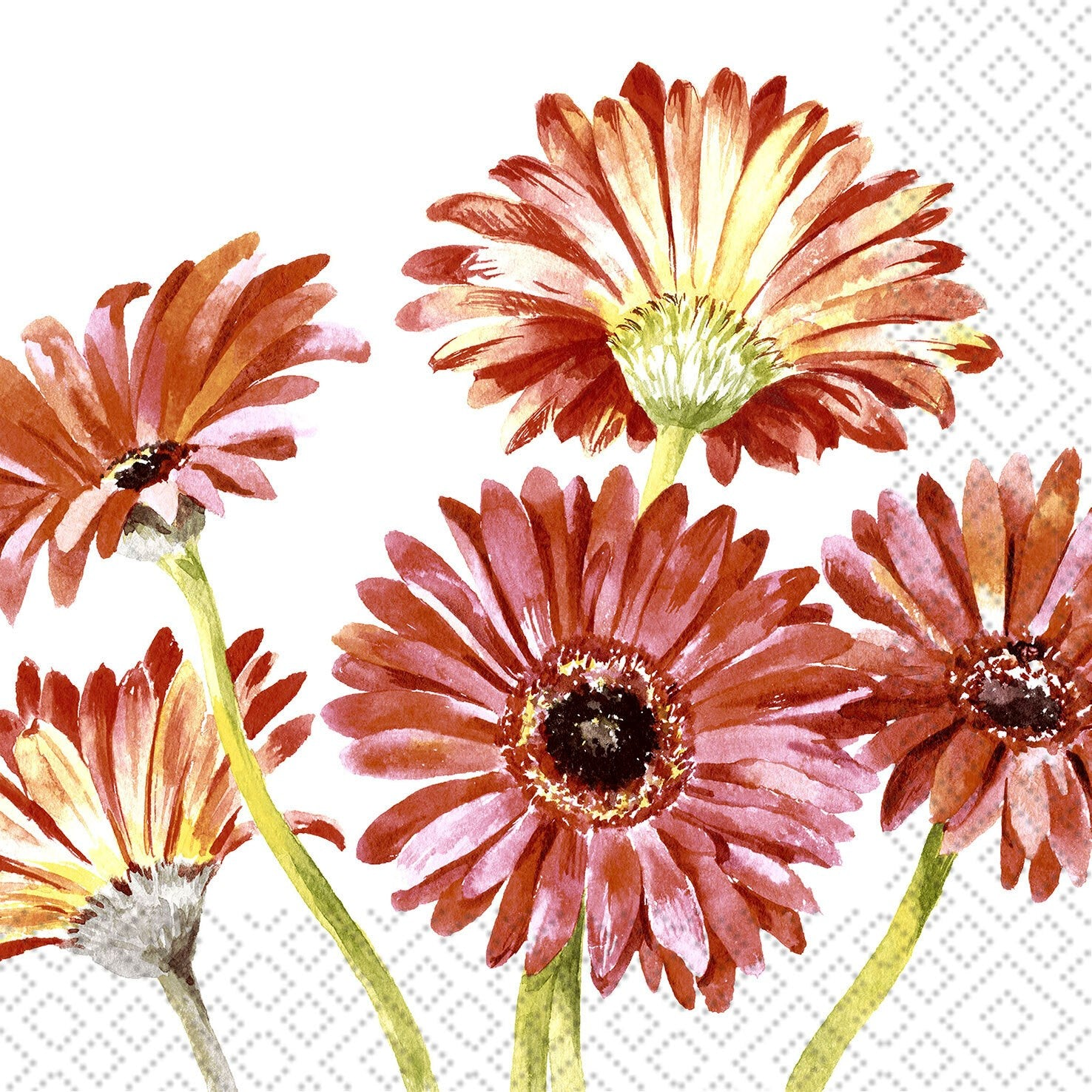 Gerbera Art Lunch Napkins