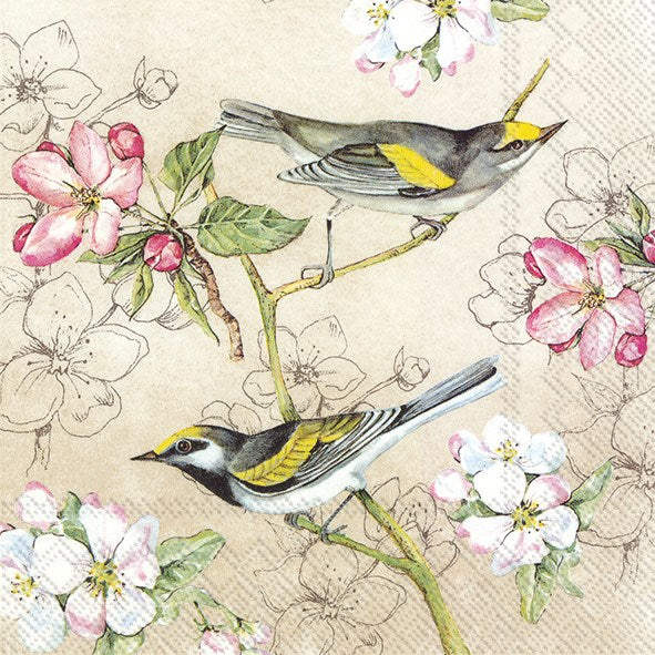Birds Symphony Napkins for Decoupage