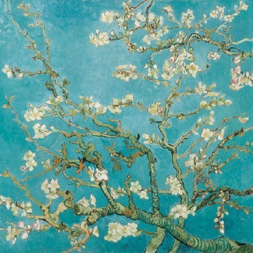 almond blossoms decoupage napkins